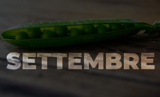 verdura-mese-settembre
